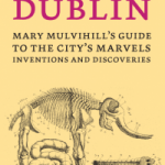 Ingenious Dublin ebook