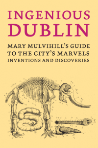 Ingenious Dublin guidebook